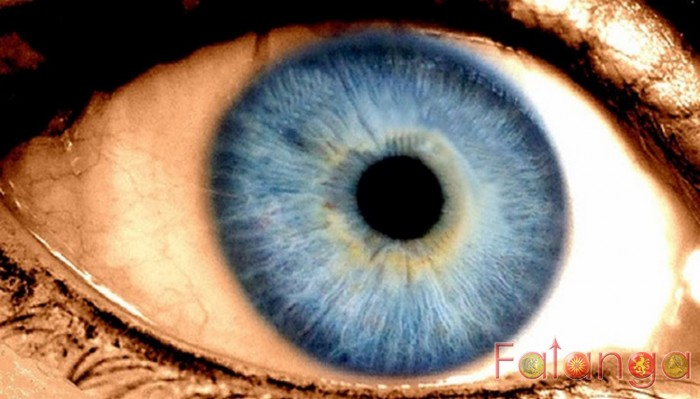 what causes eyes to be blue and brown