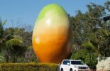 (VIDEO): The Big Mango mystery has been solved