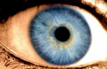 Blue Eyes Originated 10,000 Years Ago in the Black Sea Region