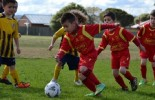 2015 Juniors Training for all Boys and Girls (U7's to U18's)