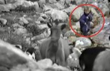 (VIDEO) Rare Footage of a 5-Year-Old Luka Modric Herding Goats on Velebit Mountain